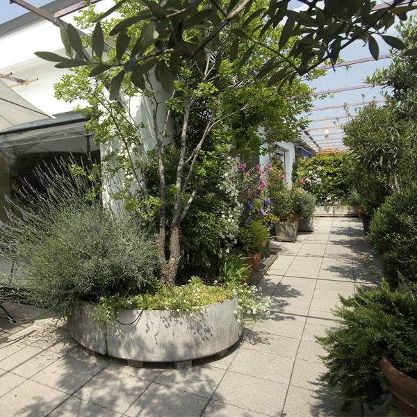 il verde su misura manutenzione terrazzi